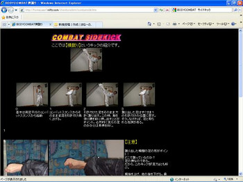 Bodycombat_sidekick