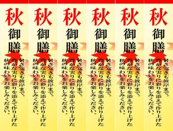 Akigozen_sheet