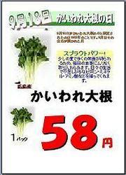 kaiware01