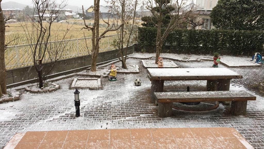 今シーズン2度目の我が家の降雪